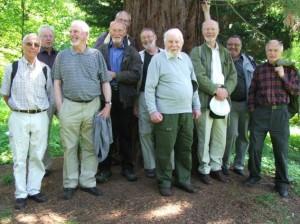 Forsamling ved Sequoiadendron Giganteum